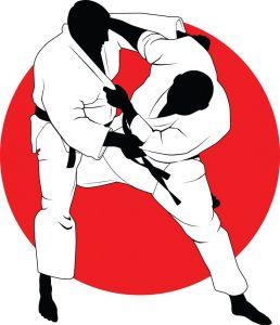 judo bild