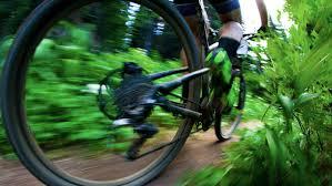 mountainbike träning och budo